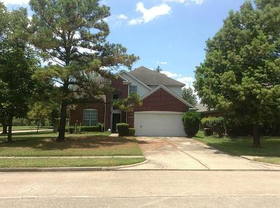 Houston Single Family Home For Sale: 9503 Willowlake Park Drive