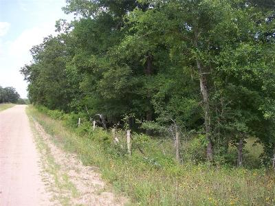 Austin County Farm & Ranch For Sale: 1 Schoenau Road