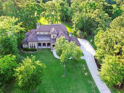 Magnolia Single Family Home For Sale: 32719 Green Bend Court