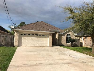 Houston Single Family Home For Sale: 9215 Klondike Street