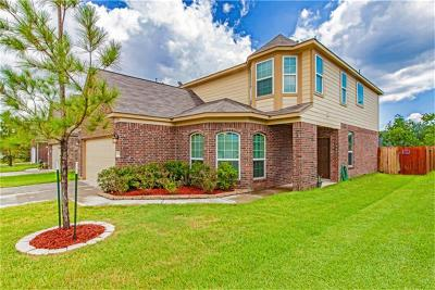 Houston Single Family Home For Sale: 4927 Evergreen Haven Court