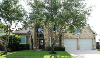 Shadow Creek Ranch Single Family Home For Sale: 2813 Rocky Springs Drive