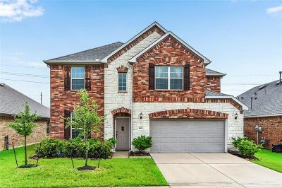 Tomball Single Family Home For Sale: 24622 Emerald Pool Falls Drive