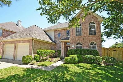 Houston Single Family Home For Sale: 9102 Baber Drive