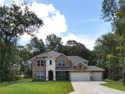 Conroe Single Family Home For Sale: 9131 White Tail Drive
