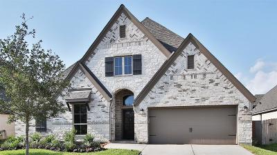 Pearland Single Family Home For Sale: 3109 Cactus Grove Lane