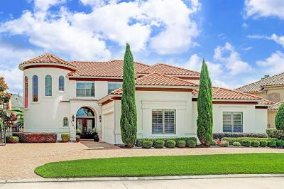 Houston Single Family Home For Sale: 13614 Meridian Springs Lane