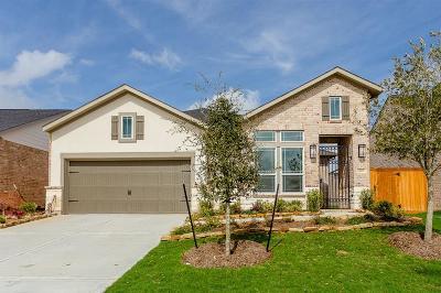 Houston Single Family Home For Sale: 13227 Fairfield Arbor Drive
