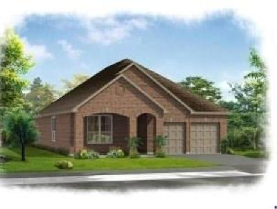 Spring Single Family Home For Sale: 29538 Westhope Drive