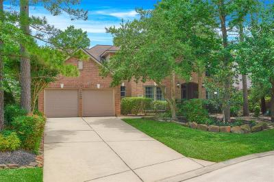 The Woodlands Single Family Home For Sale: 10 Merit Woods Place