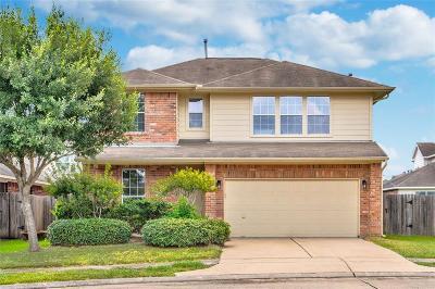 Galveston County, Harris County Single Family Home For Sale: 10163 Twila Springs Court