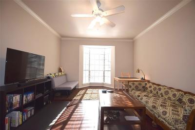 Houston Condo/Townhouse For Sale: 2255 Braeswood Park Drive #232