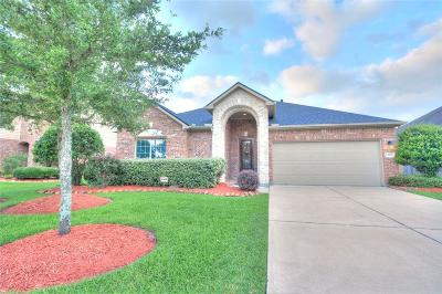 Pearland Single Family Home For Sale: 13007 Winter Springs Drive