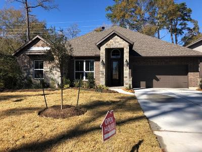 Tomball Single Family Home For Sale: 10210 Falcon Flight Lane