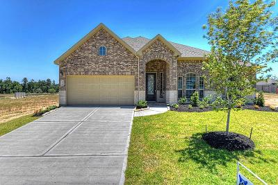 Spring Single Family Home For Sale: 24026 Willow Rose Drive