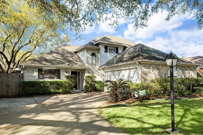 Houston Single Family Home For Sale: 10314 Briar River Drive