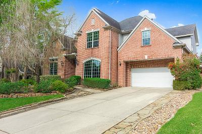 The Woodlands Single Family Home For Sale: 11 Oakley Downs Place