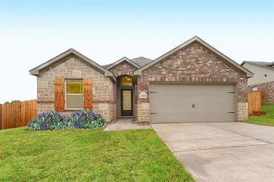 Single Family Home For Sale: 12454 Hackberry