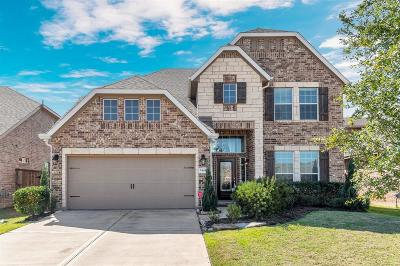 Fort Bend County Single Family Home For Sale: 24431 Peroni Drive