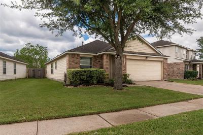 Houston Single Family Home For Sale: 10206 Kinsdale Crossing Lane