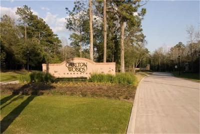 The Woodlands Residential Lots & Land For Sale: 6 Bay Cliff Court