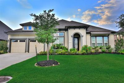 Katy Single Family Home For Sale: 1126 Falling Water Lane