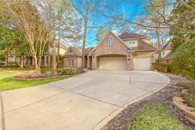Alden Bridge, Cochran's Crossing, Cochrans Crossing, Creekside Park, Grogans Mill, Indian Springs, Panther Creek, Sterling Ridge Single Family Home For Sale: 58 Glentrace Circle