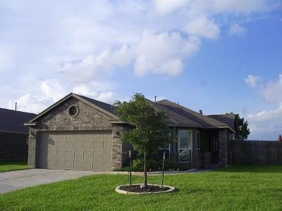Rosenberg Single Family Home For Sale: 3007 Keystone Square Lane