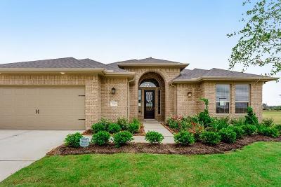 Single Family Home For Sale: 28802 Rising Moon Lane