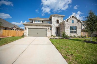 Conroe Single Family Home For Sale: 1506 Graystone Hills Drive