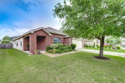 Tomball Single Family Home For Sale: 19707 Bold River Road