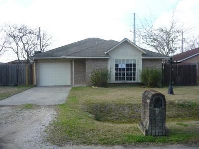 Galveston County Single Family Home For Sale: 704 Amato Street