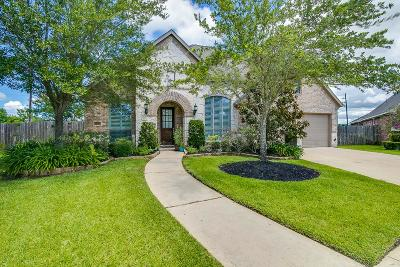 Sugar Land Single Family Home For Sale: 3803 Bluffstone Court