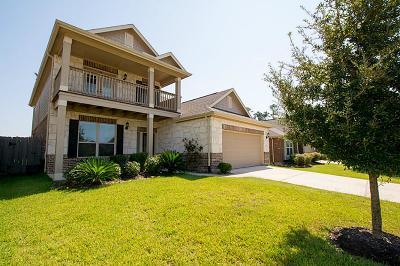Porter Single Family Home For Sale: 24119 N McKinzie Ridge Drive