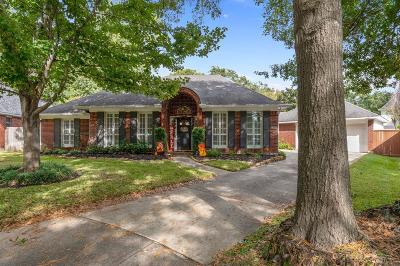 Tomball Single Family Home For Sale: 16322 Hammerwood Court