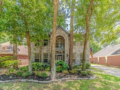 Houston Single Family Home For Sale: 16002 Cutten Road