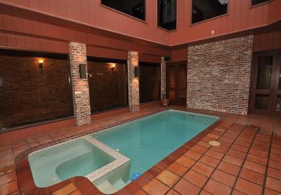 Houston Single Family Home For Sale: 9611 Bayou Brook Street