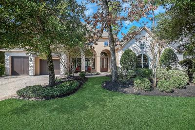 The Woodlands Single Family Home For Sale: 27 Silvermont Drive