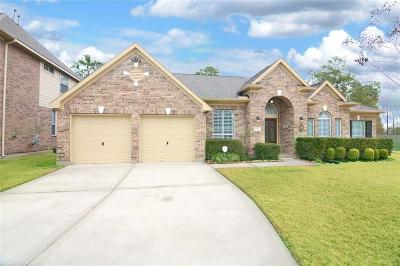 Spring Single Family Home For Sale: 19302 Brittany Creek Drive