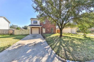 Houston Single Family Home For Sale: 2435 Falling Oaks Road