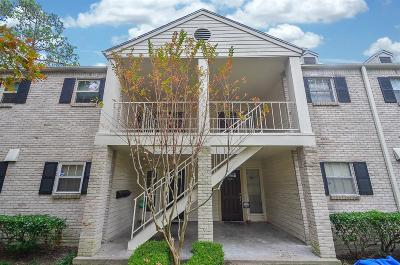Houston Condo/Townhouse For Sale: 13028 Trail Hollow Drive