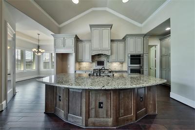 Katy Single Family Home For Sale: 3811 Birdsall Falls Lane