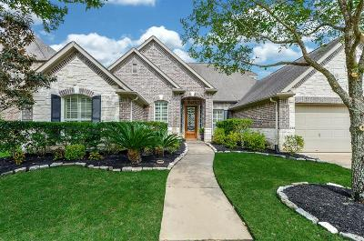 Missouri City Single Family Home For Sale: 3318 Dancing Creek Lane
