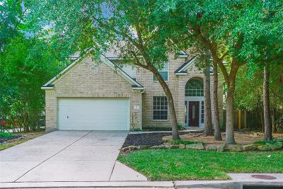 The Woodlands Single Family Home For Sale: 18 Beckett Hill Place