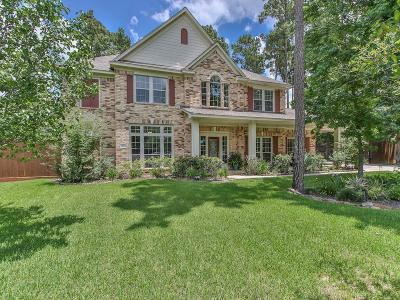 Tomball Single Family Home For Sale: 29703 Orchard Grove