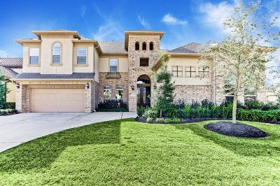 Sugar Land Single Family Home For Sale: 6411 Caparra Rock Lane
