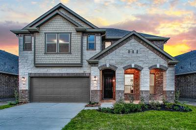 Katy Single Family Home For Sale: 28502 Buffalo Fork Lane