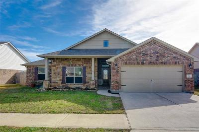 Austin County Single Family Home For Sale: 244 S Lantana Circle