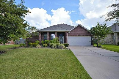 Pearland Single Family Home For Sale: 4009 Canterbury Park Lane
