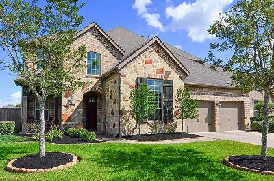 Manvel Single Family Home For Sale: 4103 Yucca Court